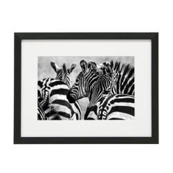 Gerahmtes Bild Animal Nr12 – Kunststoffrahmen Schwarz