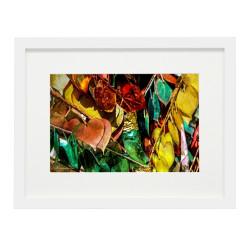 Gerahmtes Bild Color Nr14– Kunststoffrahmen Weiß